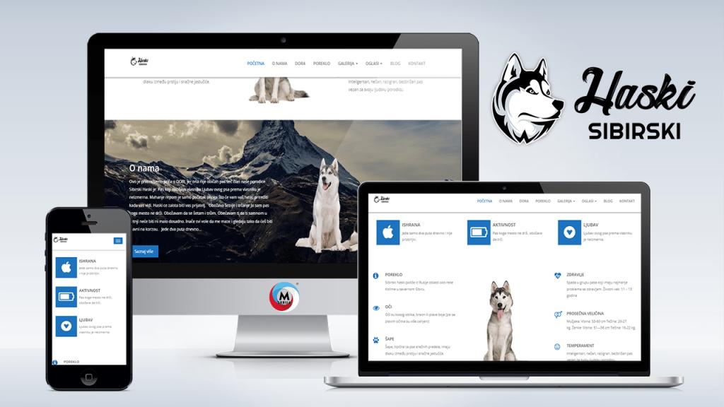 haski-sibirski-ch-portal-websajt-min